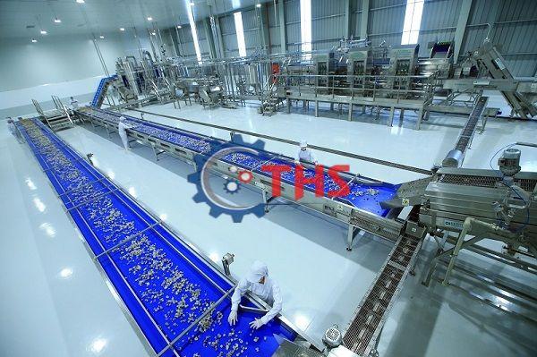 Băng tải nhựa trong dây chuyền vận chuyển nhãn vô cùng hiệu quả và đạt năng suất cao
