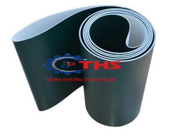 Loại băng tải PVC được sử dụng nhiều trong ngành công nghiệp chế biến thực phẩm